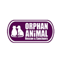 Orphan Animal